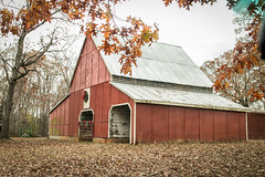 Christmas barn - Anderson Co, S.C. (DT's Photo Site - Anderson S.C.) Tags: canon 6d 24105mml lens country roads andersonsc upstate vintage farm rural south southern vanishing landscape barns cattle