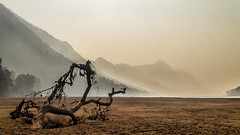 On the surface of Mars (woveninlight.com) Tags: morning wallpaper mars mountains fog sunrise river photography natural deadtree gorge orissa forestreserve mahanadi satkosia tikarpara odhisa