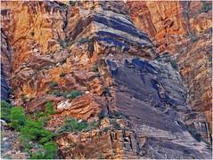 Starting the Climb, Zion NP, Angel's Landing Trail 5-1-14zg (inkknife_2000 (6.5 million views +)) Tags: usa nature sunrise landscapes utah hiking zionnationalpark nationalparks virginriver firstlight utahnationalparks angelslandingtrail redrockformations dgrahamphoto