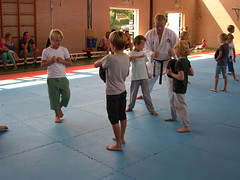 "zomerspelen 2013 karate clinic • <a style=""font-size:0.8em;"" href=""http://www.flickr.com/photos/125345099@N08/14405913352/"" target=""_blank"">View on Flickr</a>"