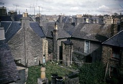 Unknown (Dundee City Archives) Tags: street old david ferry architecture design photos dundee victorian historic flats era housing broughty victorianhousing victoriantenements olddundeephotos