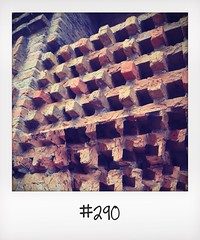 "#DailyPolaroid of 15-7-14 #290 • <a style=""font-size:0.8em;"" href=""http://www.flickr.com/photos/47939785@N05/14545386438/"" target=""_blank"">View on Flickr</a>"