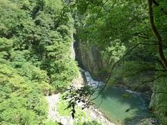Skocjianske jame (19) (Naturalmentescienza) Tags: grotte jame reka skocjanske timavo sancanziano scanziano
