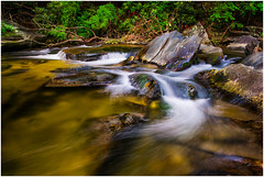 Harmony - Steele Creek North Carolina (dcimageforge Danny Collado PixelWorks Photography) Tags: longexposure trees portrait sunlight lightpainting reflection nature water beautiful leaves stone creek forest river landscape outdoors waterfall nc pond nikon rocks stream flickr outdoor north tranquility northcarolina naturallight headshot calm carolina 28 d800 splendor 2014 huntersville 2470 2013 pixelworks sb700 dcimageforge dannycollado