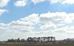 1720 Cobden-Terang Road, Dixie VIC