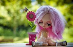 Pinky Sunday