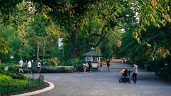 20140807-DSC04845.jpg (Ngarich) Tags: park new york summer green centralpark manhattan central lush