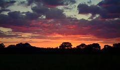 Wirral sky. (Lee1885) Tags: sunset night dark ledsham wirall
