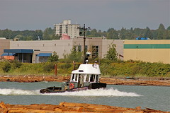 PACIFIC tugboats canada (agent1320) Tags: canada west river coast boat marine tugboat tug tow towing towboat