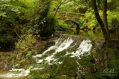 Dun Na Ri (Ronan McCormick) Tags: ireland water canon river landscape cavan forestpark kingscourt rabbitbridge ilobsterit dunnarí