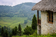 Resort on highland (Anh Dang ^_^) Tags: wild vacation mountain west green tourism nature field zeiss rural canon relax landscape 50mm prime hotel countryside is high focus quiet rice natural terrace hiking getaway top hill north cottage tourist resort vietnam highland step carl m42 fields fixed rest mf cz manual agriculture accommodation 50 eco tranquil sapa attractions laocai topaz 6d 24105 terraced ecolodge wheretogo