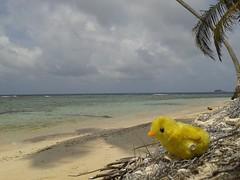 Kuna Yala - Panama (exp_mutare) Tags: islands san panama sanblas blas pintinho kuna guna kunayala