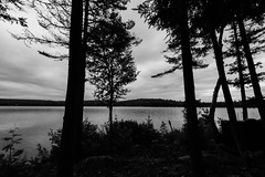 . (mchan13) Tags: trees sunset portrait nature clouds landscapes fishing lakes lakescapes tildenlake