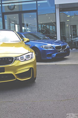 Austin Yellow (Happiness by the Kilowatts Photography) Tags: photography australia melbourne automotive f10 bmw m5 m4 f82