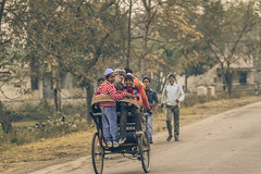 IMG_3761 (gaujourfrancoise) Tags: voyage travel india elephant portraits countryside asia farmers country kerala asie camels campagne buffalos rajasthan inde paysans uttarakhand gaujour