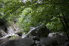 Swimmin' hole! (sonicimac) Tags: wild mountain mountains classic beauty swimming river virginia spring sticks nice woods hole natural scenic va appalachian appalachia blueridgemountains swimminghole blueridge springwater appalachianmountains nelsoncounty nelsoncountyva