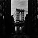 My New York_17