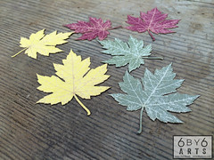 Autumn Leaves (thea superstarr) Tags: leaves scrapbooking paper washington maple stock craft card supplies pnw lasercut cardstock madeintheus laserengraved 6by6arts