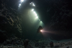 St. John's Canyons (Carles Molina) Tags: africa uw model redsea egypt wideangle caves reef dangerousreef
