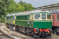 D6501 Buckfastleigh 08.09.14 (Chris W Brown) Tags: heritage sdr diesel transport rail railway places devon railways preservation buckfastleigh crompton diesellocomotive southdevonrailway class33 33002 brcw diesellocos d6501