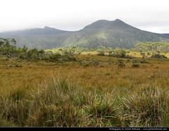 Franklin-Gordon Wild Rivers NP, Tasmania, Australia (JH_1982) Tags: park wild nature landscape franklin national gordon rivers np australien tas tassie australie  tasmanien  tasmanie  franklingordon tasmnia       scenictasmania