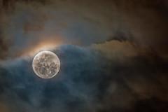 An Aussie Super Moon _ (BlueberryAsh) Tags: craigieburn moon supermoon clouds cloudsstormssunsetssunrises melbourne australian nikond750 tamron150600