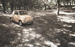 PhotoShooting - Alfa Romeo 4C & Fiat 500 (Andre.Vieira.) Tags: sun light dof orange portugal fiat hp 500 4c photo nature landscape canon 6d 70200 28 24105 50mm 14 cars car automotive auto andre vieira photography session alfaromeo
