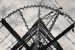 Monty Pylon (NVOXVII) Tags: pylon electricity metal barbedwire shapes composition lines angles geometric lookingup powerlines cables perspective nikon exploring walking discover hampshire bnw blackwhite monotone