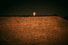 October 31st (Dirk Bruyns) Tags: sony nex3n yashinonds50mmf19 yashica yashinon halloween mask