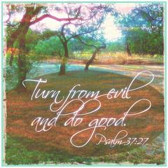 TurnFromEvil (Yay God Ministries) Tags: turnfromevilanddogood psalm3727 psalm37 yaygod bible scripture god