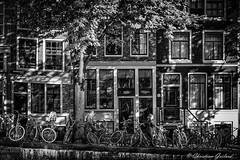 Light and shadow on windows (christian.grelard) Tags: amsterdam netherlands noiretblanc bw blackandwhite nb monochrome