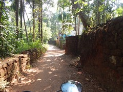 Villages Near Calicut Kerala Photography By CHINMAYA M (4)