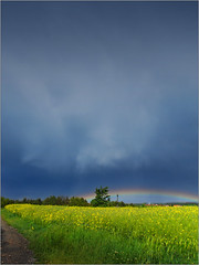 Very flat rainbow (piontrhouseselski) Tags: cz moravia rainbow cross village sky field