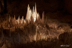 Fortress (Alfred J. Lockwood Photography) Tags: alfredjlockwood nature landscape cave cavern carlsbadcavernsnationalpark nationalpark stalactite texture shapes newmexico