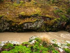 ylisjarvi09 (Kola-apsa) Tags: ylisjrvi muurla salo koskenjoki river