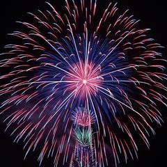 Explosion (peaceful-jp-scenery (busy)) Tags: fireworks display summer festival enshu shizuoka japan        sony 7r a7r ilce7r amount sal70300g 70300mmf4556gssm laea4
