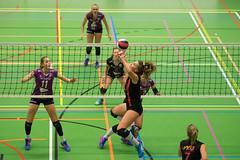1B260747 (roel.ubels) Tags: vv utrecht eurosped galgewaard volleybal volleyball 18 finale nationale beker