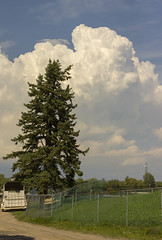 Sunday Afternoon (rumimume) Tags: potd rumimume 2016 niagara ontario canada photo canon 550d t2i sigma cloud billow puffy sky summer outdoor nature