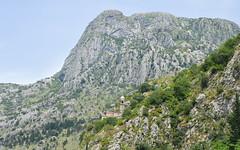 DSC_0301 (jdcruzba) Tags: kotor montenegro crnagora d5100