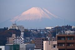 PC040008-1 (vincentvds2) Tags: fuji fujisan mountfuji mtfuji roof yokohama morning