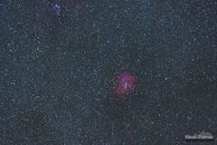 Rosette Test (kevin-palmer) Tags: bighornmountains bighornnationalforest winter december night sky stars starry astronomy astrophotography dark nikond750 nikon180mmf28 telephoto space rosettenebula red color colorful ioptronskytracker clear cold frigid astrometrydotnet:id=nova1850206 astrometrydotnet:status=solved