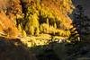 Simplonpass - Gondo 26.10 (173) (Maurizio Piazzai) Tags: cai gondo routestocklper simplondorf simplonpass valledelsempione stradanapoleonica viastockapler ottobre colori alberi cromoterapia paesaggio natura