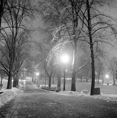 020459 07 (ndpa / s. lundeen, archivist) Tags: nick dewolf nickdewolf blackwhite photographbynickdewolf tlr bw 1959 1950s february winter boston massachusetts beaconhill night nighttime wintersnight park common bostoncommon tree branches snow snowy snowfall trees film 6x6 mediumformat monochrome blackandwhite light lights path pathway benches parkbenches