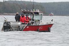 60623284 (QCL Shooter) Tags: qcl haidagwaii bcfishing salmon sportfishing queencharlottelodge fishingfirstclass adventure chinook halibut cr catchrelease