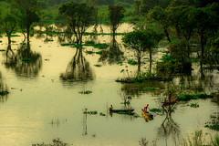 Prek toal Cambodia _4005-20 (ichauvel) Tags: prektoal tonlesap lac lake arbres trees reflets reflections enfants children bateau barque boat exterieur outside coucherdesoleil sunset lumiére light beautédelanature beautofnature cambodge cambodia asie asia asiedusudest southe south east