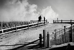R3-018-7A (David Swift Photography) Tags: davidswiftphotography newjersey oceancity dunes beaches fences silhouette dunegrass path people fatherson 35mm film ilfordxp2 leicaminilux seashore