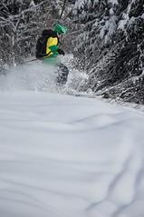 DSC_4926 (cbr900rmd) Tags: stg skiing offpiste