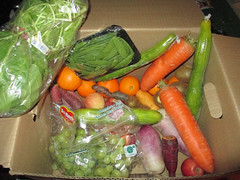 20160320 - Hungry Harvest delivery - IMG_0674 (Rev. Xanatos Satanicos Bombasticos (ClintJCL)) Tags: 20160320 201603 2016 food pea peas snow carrot carrots zucchini fruit orange oranges potato potatoes radish purpleradish kiwi grape grapes spinach virginia alexandria clintandcarolynshouse kitchen deliveryservice service delivery hungryharvest