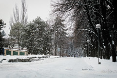 last winter in kishinev (Yuki-a-Gogo!) Tags: winter winterscene winterinthecity kishinev chisinau moldova snow snowystreets winterwalk streetview