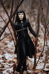 008 (Kumaguro) Tags: bjd dollshe husky dollshehusky dollsheoldhusky autumn earlywinter dark gothic forest